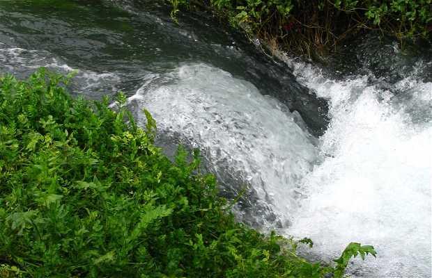 Nacedero del río Queiles