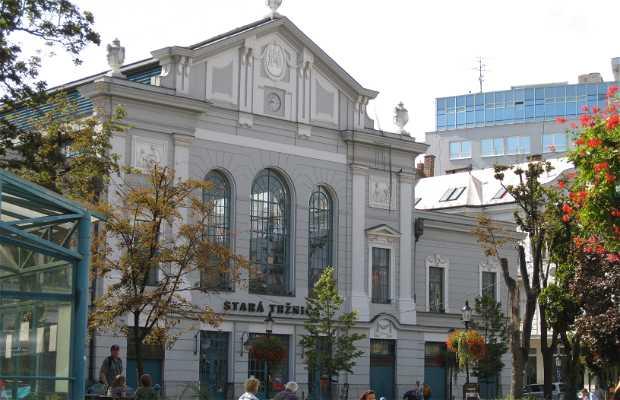 Antiguo Mercado - Stara Trznica