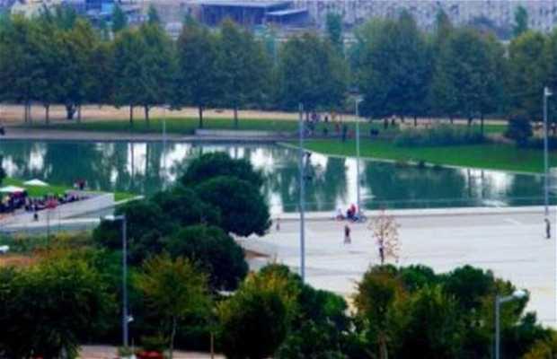 Can Zam Park