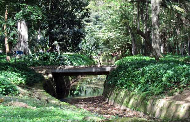 Río de los Macacos - Río de los Monos