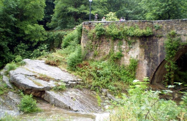 Puente sobre el Argoza