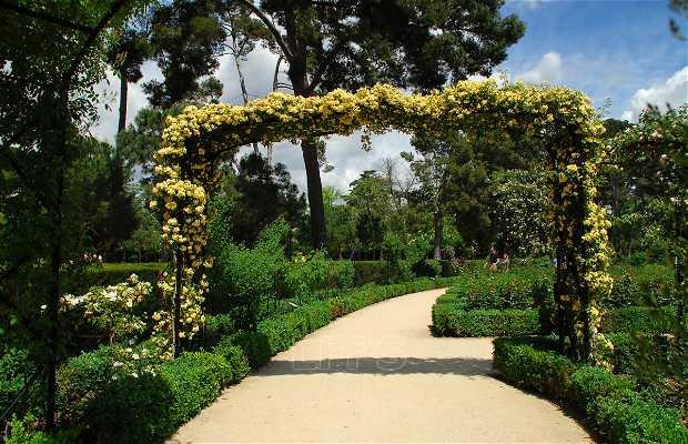 Cecilio Rodriguez\\\'s rose garden