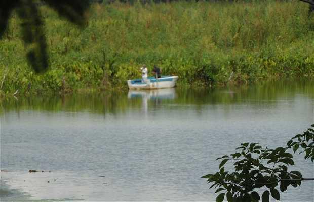 laguna Ticamaya