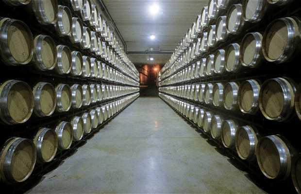 Izadi winery