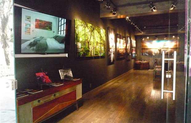 Photo Gallery Polanco