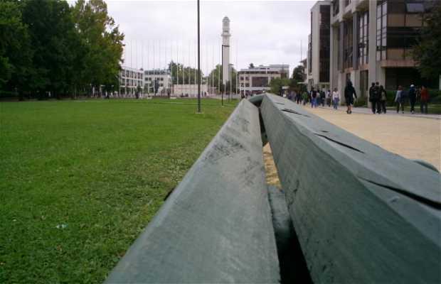 Università di Concepción