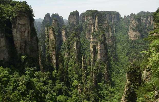 Parque Nacional de Zhangjiajie