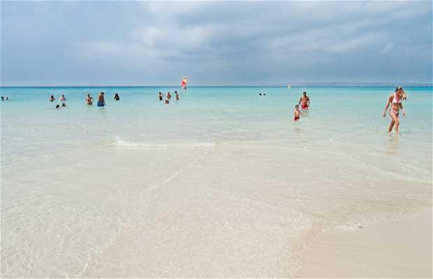 Playa Es Copinar