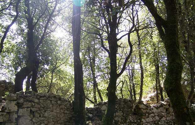 Abadía de Monte Sacro