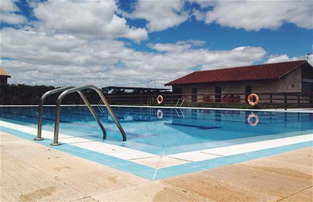 Bar piscina de montamarta en montamarta 1 opiniones y 1 for Piscina zamora
