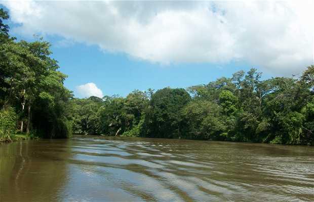 Cano negro Refugio Nacional de vida silvestre