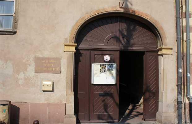 Musée d'Histoire naturelle et d'Ethnographie de Colmar