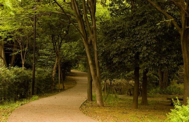 Parque Todoroki