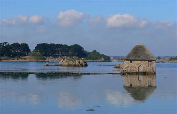Bréhat island
