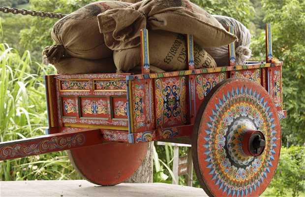 Tradición del boyeo y las carretas