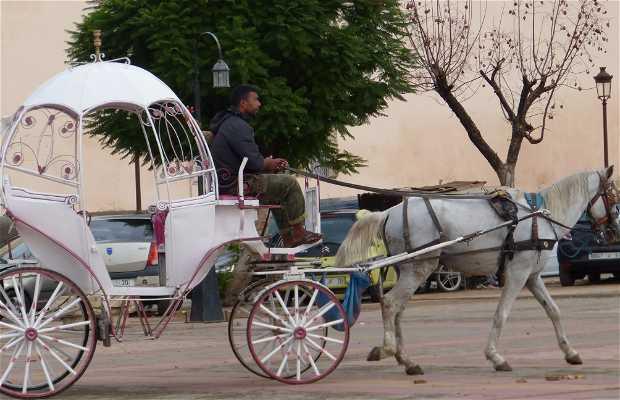 Parada de Carruajes