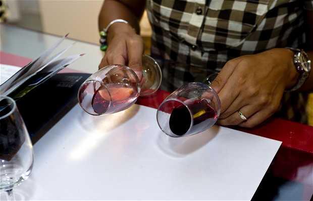 Arte y Vino Aranda