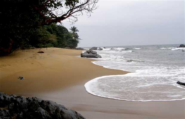 Costa sur de Camerún