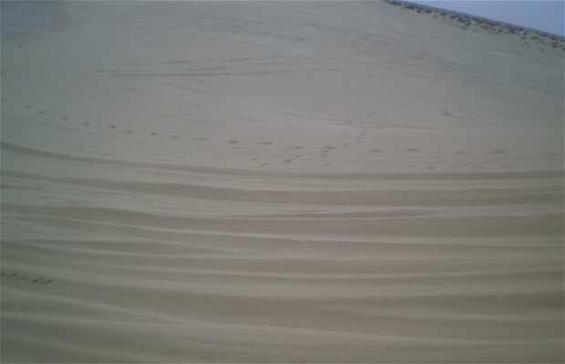 The Tunisian Sahara: Great Eastern Erg