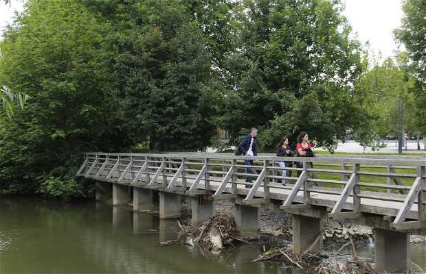 Puente Postumia