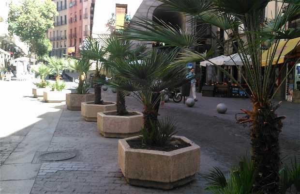 Restaurante Las Cuevas de Luís Candelas