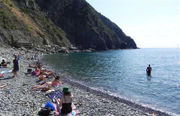 Playa de Riomaggiore