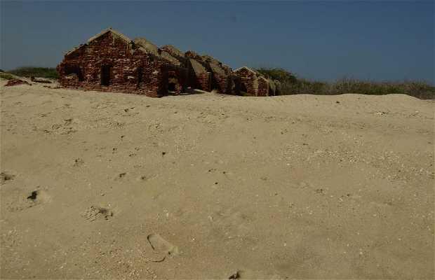 Spiaggia Dhanushkodi