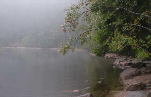 Lac Mummelse