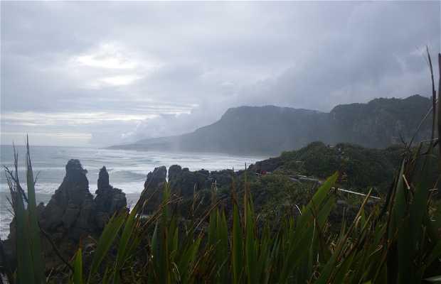 Paparoa National Park