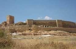 Castillo De Munera