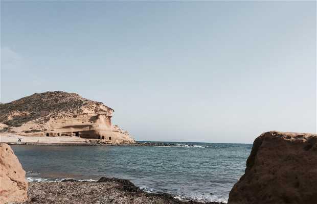 Puntas de cálnegre Lorca
