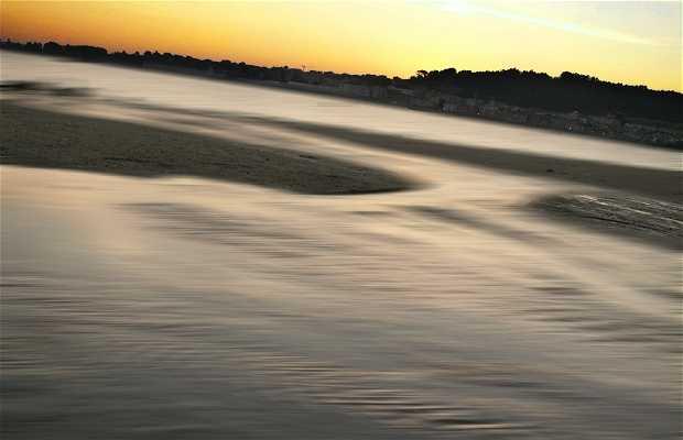 Playa de Rodeira