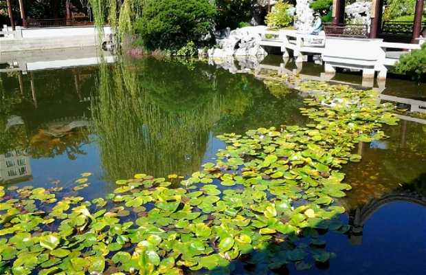lan su Chinese Gardens