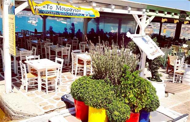 Apoplous Taverna and Ouzeri