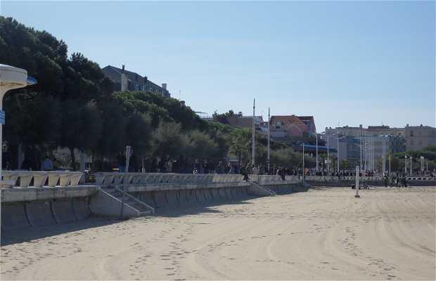 Bulevar de la Playa