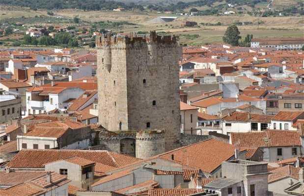 Tribute Tower Castle of the Dukes of Alba