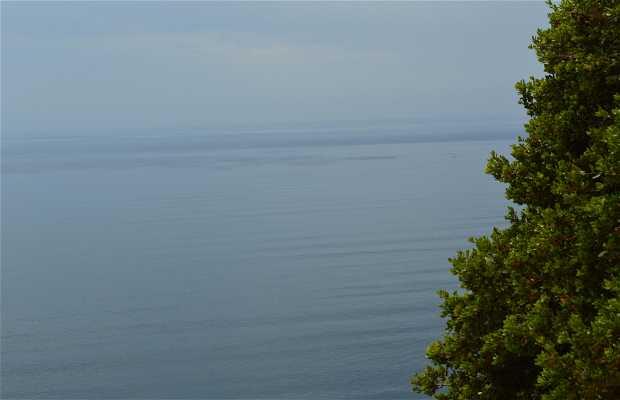 Ensenada Viewpoint