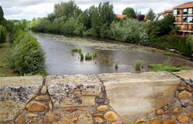 El Río Órbigo