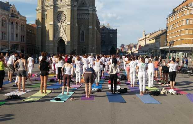 Public Yoga Class,City Hall Novi Sad,Serbia