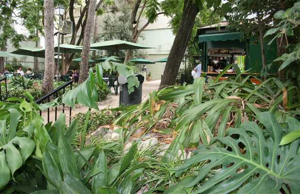 Jardines de la Casa de la Marquesa