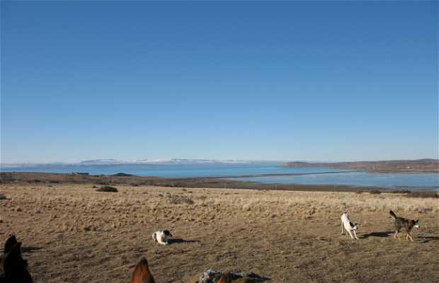 Cabalgata por el Lago Argentino