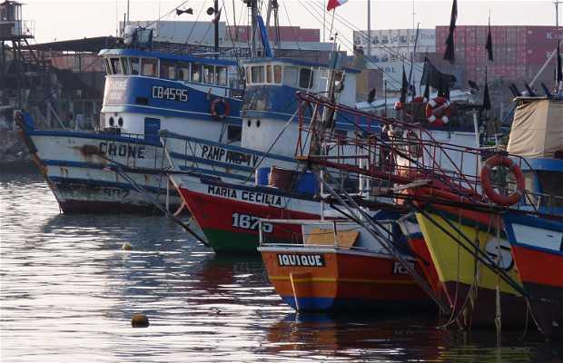 Port of Iquique