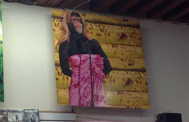 Muno, el no museo de arte contemporaneo