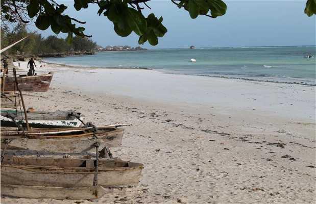 Playa de Kizimkazi