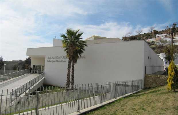 Jose Manuel Lara Library