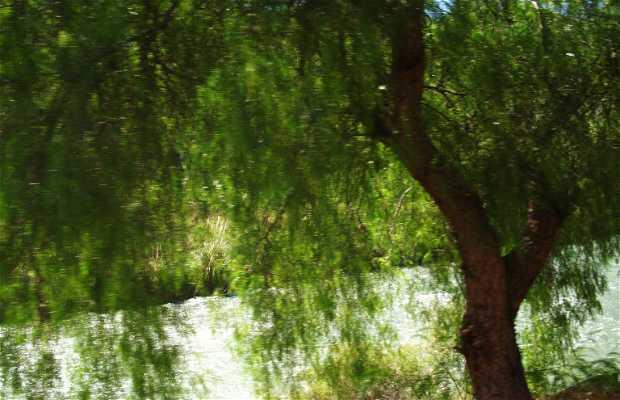 Bordeando el Rio Atuel
