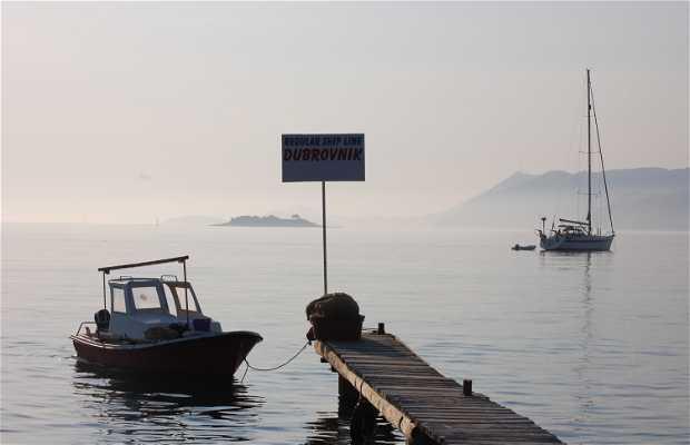 Puerto de Cavtat
