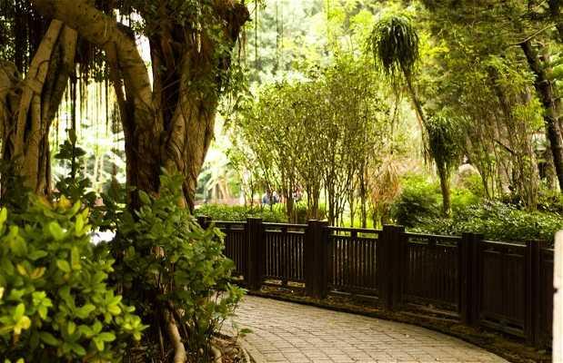 Parque Hammer Hill