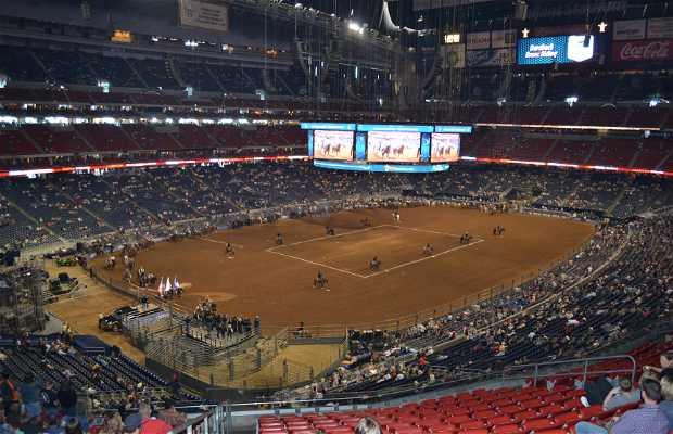 Rodeio de Houston