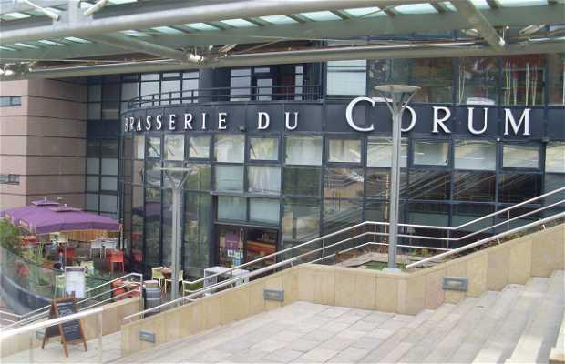 Brasserie du Corum Husser